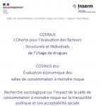 Salles de consommation à moindre risque en France: rapport scientifique